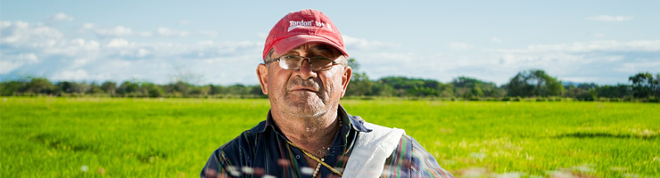 Dakboerderij met superview